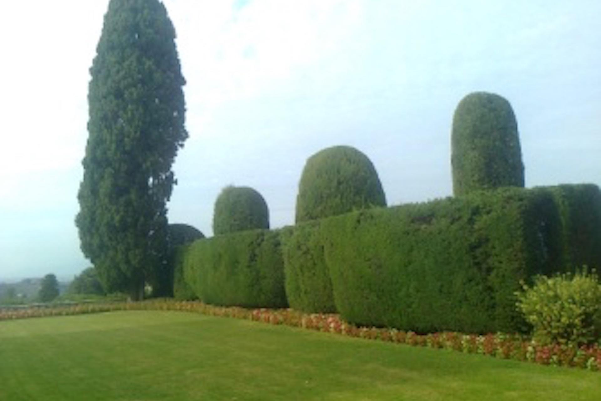 manutenzione-giardini4